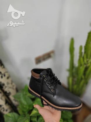 نیم بوت چرم در دو رنگ موجود است در گروه خرید و فروش لوازم شخصی در تهران در شیپور-عکس5