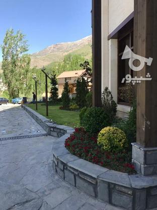 690  متر  بهترین لوکیشن زعفرانیه با جواز قابل ساخت و سکونت در گروه خرید و فروش املاک در تهران در شیپور-عکس3