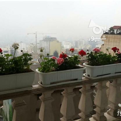 فروش آپارتمان 172 متر در نیاوران در گروه خرید و فروش املاک در تهران در شیپور-عکس2
