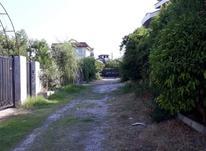 زمین مسکونی 2000 متر در کلارآباد  در شیپور-عکس کوچک