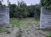 370 زمین مسکونی کلاراباد در شیپور-عکس کوچک
