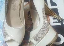 کفش پاشنه بلند دخترانه  در شیپور-عکس کوچک
