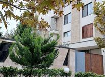 آپارتمان 200 متر در کوی مهر - مهرشهر در شیپور-عکس کوچک