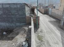 فروش زمین و باغ جهت ساخت ویلا در شیپور-عکس کوچک