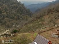 فروش زمین مسکونی کوهپایه ای در شیپور-عکس کوچک