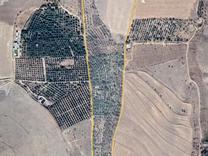 فروش 6 هکتار باغ مثمر در مراغه در شیپور
