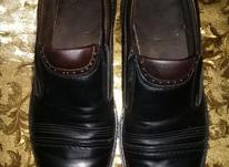 کفش مردانه تمیز سایز43 در شیپور-عکس کوچک