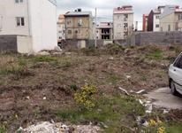 فروش زمین مسکونی 150 متر در فلسطین در شیپور-عکس کوچک