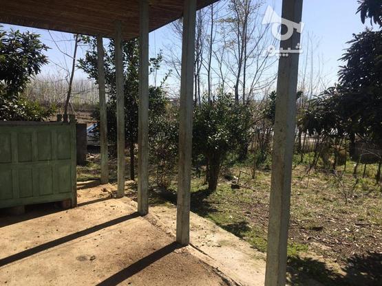 فروش خانه روستایی 560 متر در صومعه سرا در گروه خرید و فروش املاک در گیلان در شیپور-عکس3