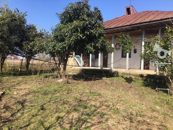 فروش خانه روستایی 560 متر در صومعه سرا در گروه خرید و فروش املاک در گیلان در شیپور-عکس1