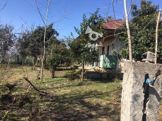فروش خانه روستایی 560 متر در صومعه سرا در گروه خرید و فروش املاک در گیلان در شیپور-عکس2