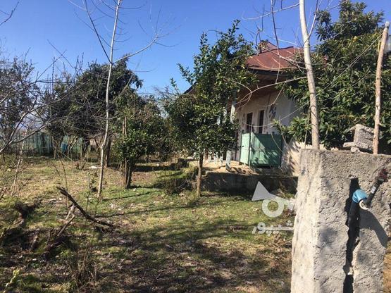 فروش خانه روستایی 560 متر در صومعه سرا در گروه خرید و فروش املاک در گیلان در شیپور-عکس6
