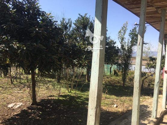 فروش خانه روستایی 560 متر در صومعه سرا در گروه خرید و فروش املاک در گیلان در شیپور-عکس5