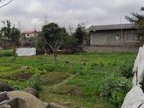 فروش زمین مسکونی 280 متر در چناربن در شیپور
