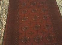 فرش دستبافت ترکمن. در شیپور-عکس کوچک