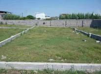زمین مسکونی 486 متر در تازه آباد بابلسر در شیپور-عکس کوچک