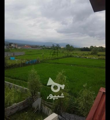 فروش زمین مسکونی 400 متری شهرکی در نوشهر در گروه خرید و فروش املاک در مازندران در شیپور-عکس1