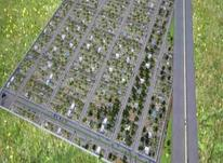 باغ سند دار  2064 متری در شیپور-عکس کوچک