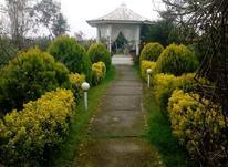 فروش باغ عروس در امل  در شیپور-عکس کوچک