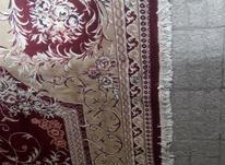 فرش 12 متری نخی در شیپور-عکس کوچک
