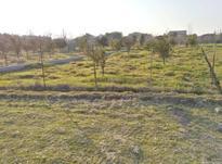 زمین مسکونی 200 فوق العاده -زیر قیمت در شیپور-عکس کوچک