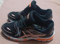 کفش asics سایز 41 در شیپور-عکس کوچک