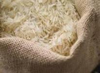 برنج فجر سوزنی تضمینی  در شیپور-عکس کوچک