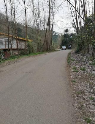 3712 متر زمین مسکونی در ارتفاعات املش در گروه خرید و فروش املاک در گیلان در شیپور-عکس11