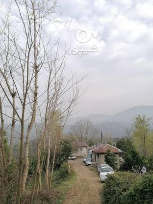 3712 متر زمین مسکونی در ارتفاعات املش در گروه خرید و فروش املاک در گیلان در شیپور-عکس8