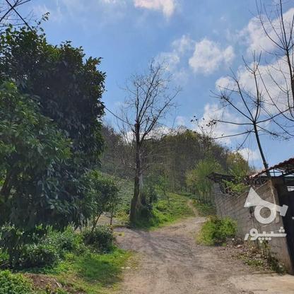 140 متر زمین مسکونی در کوهبنه در گروه خرید و فروش املاک در گیلان در شیپور-عکس3