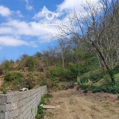 140 متر زمین مسکونی در کوهبنه در گروه خرید و فروش املاک در گیلان در شیپور-عکس4