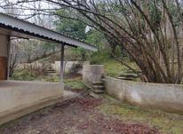 فروش ویلا باغ 740 متر سند تک برگ در شفت چوبر در شیپور-عکس کوچک