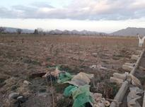 زمین کشاورزی و اب از چاه در حسین اباد مهردشت در شیپور-عکس کوچک
