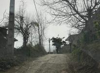 فروش زمین نیمه مسکونی واقع در جاده کیاشهر در شیپور-عکس کوچک