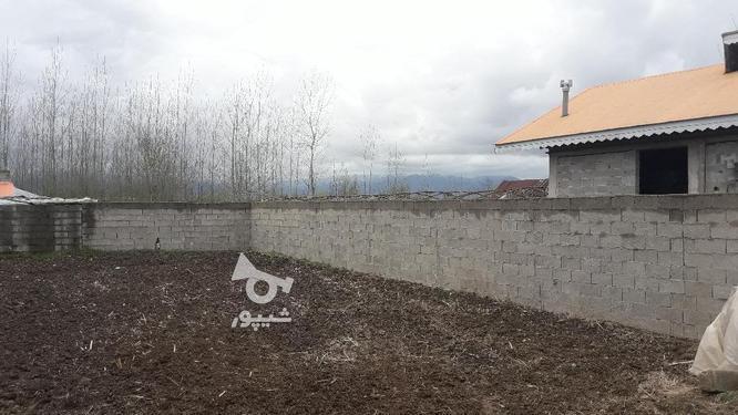 زمین مسکونی 260 متری سند تک برگ روستایی صومعه سرا در گروه خرید و فروش املاک در گیلان در شیپور-عکس2