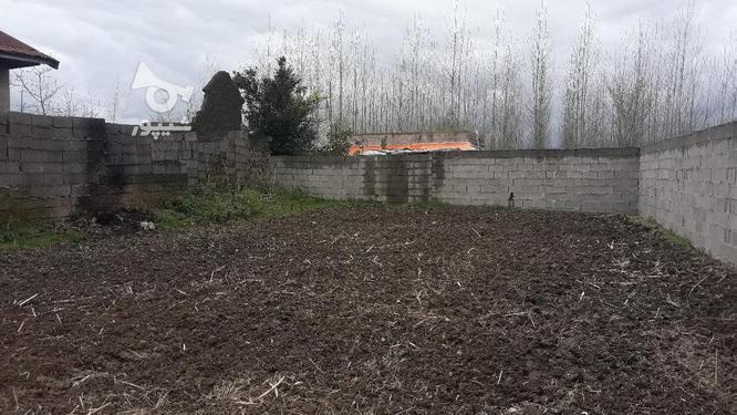زمین مسکونی 260 متری سند تک برگ روستایی صومعه سرا در گروه خرید و فروش املاک در گیلان در شیپور-عکس3