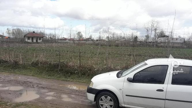 زمین مسکونی 260 متری سند تک برگ روستایی صومعه سرا در گروه خرید و فروش املاک در گیلان در شیپور-عکس4