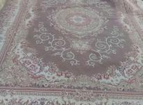 فرش 9متری گردویی در شیپور-عکس کوچک