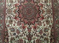 فرش دارو گول دست بافت  در شیپور-عکس کوچک