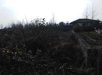 فروش زمین مسکونی 340 متر در خشکبیجار در شیپور-عکس کوچک