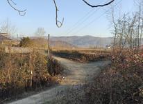 فروش زمین مسکونی 1045 متر سند دار در شفت چوبر در شیپور-عکس کوچک