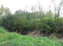 زمین 340 متری/باکاربری مسکونی خشکبیجار در شیپور-عکس کوچک