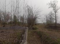 فروش زمین مسکونی 565 متر در خشکبیجار در شیپور-عکس کوچک