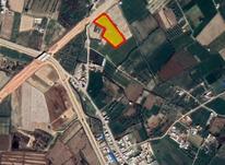 زمین بر کمربندی سرچم میاندوآب 3000 متری  در شیپور-عکس کوچک