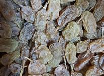 کشمش مرغوب ارگانیک  در شیپور-عکس کوچک