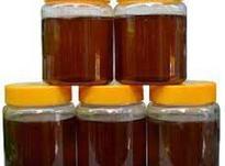 تجارت آنلاین مرغوب ترین عسل کنار در شیپور-عکس کوچک