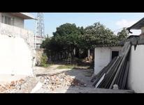 فروش زمین مسکونی 260 متر در فریدونکنار در شیپور-عکس کوچک