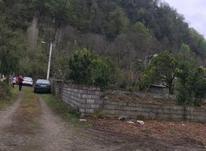 زمین داخل بافت مسکونی 300 متر در کلارآباد در شیپور-عکس کوچک