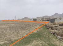 1126 متر زمین کشاورزی و دامداری در شیپور-عکس کوچک