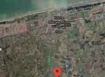 فروش زمین مسکونی 260 متر در بابلسر در شیپور-عکس کوچک